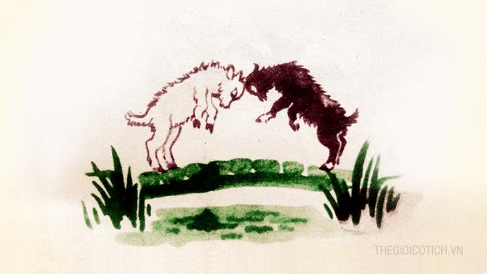 Hai con dê qua cầu (hay truyện Dê Đen và Dê Trắng)