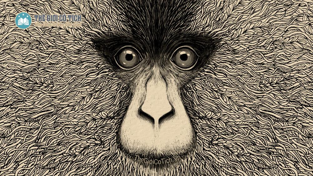 Truyện cổ tích sự tích con khỉ