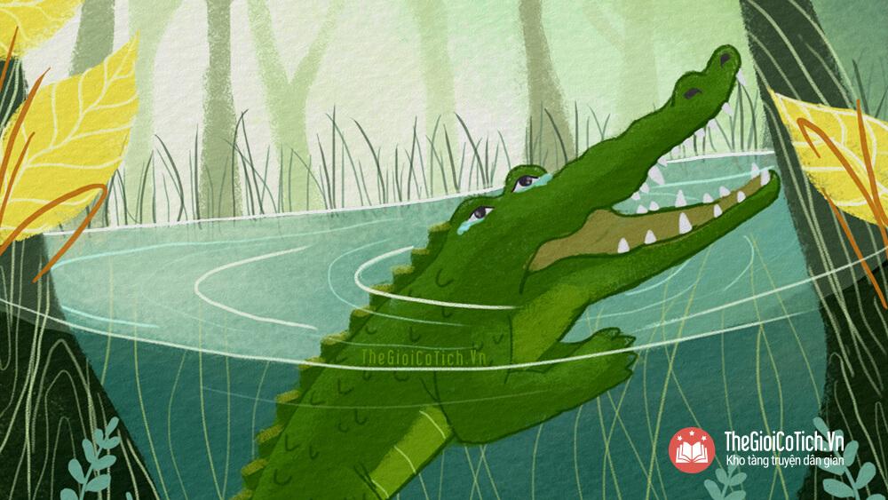 Nước mắt Cá Sấu nghĩa là gì