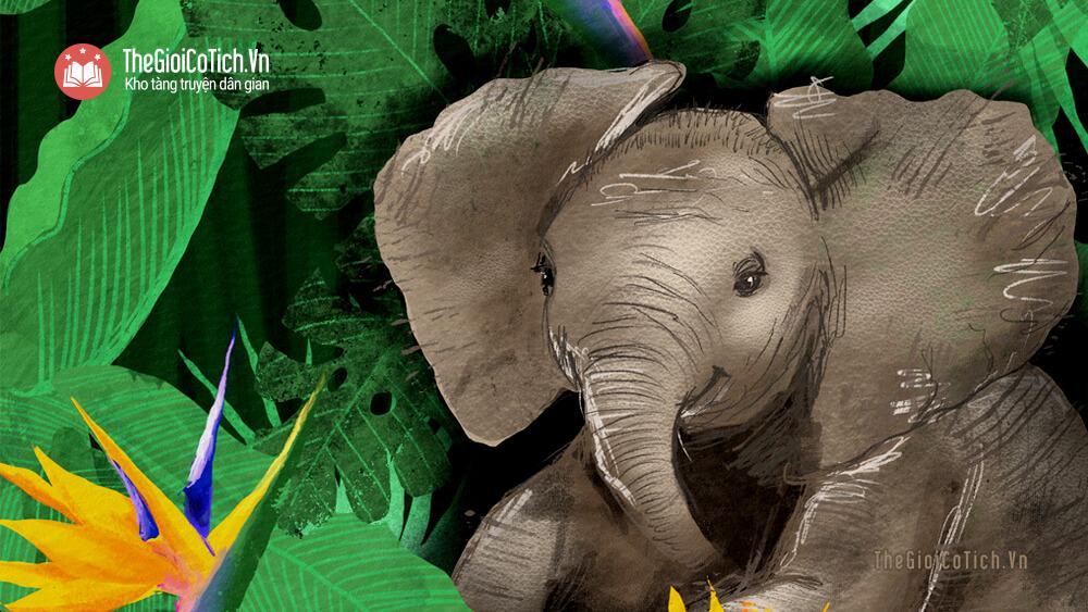 Câu chuyện Con voi và người quản tượng già
