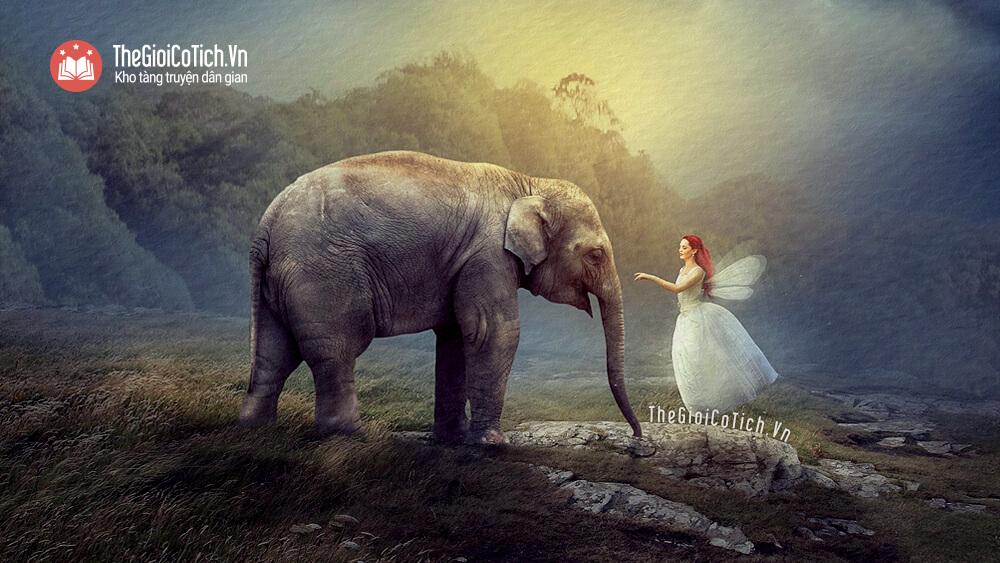 Nàng tiên trong ngà voi