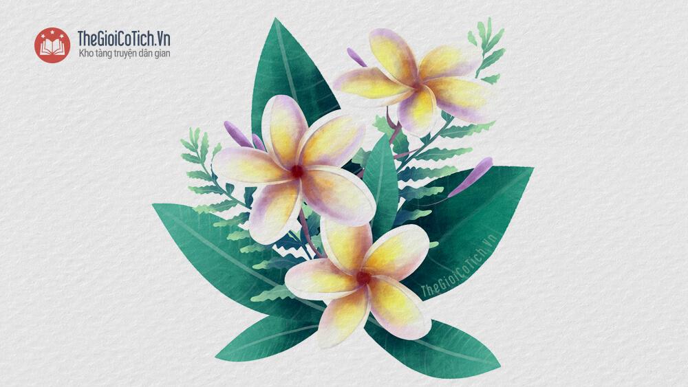 Sự tích cây hoa Sứ