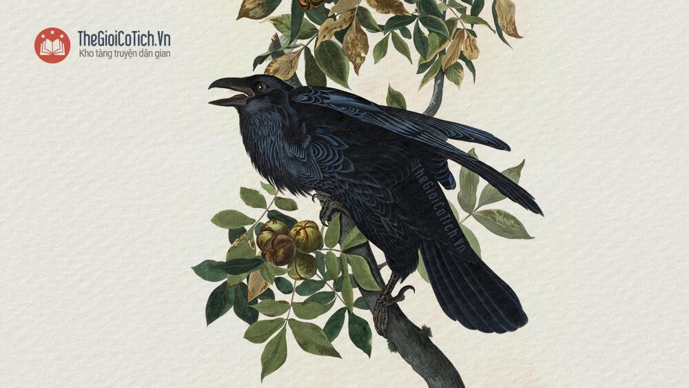 Truyện Chim Khách và Quạ