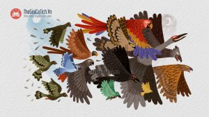 Làng chim khuyết chân Lý trưởng