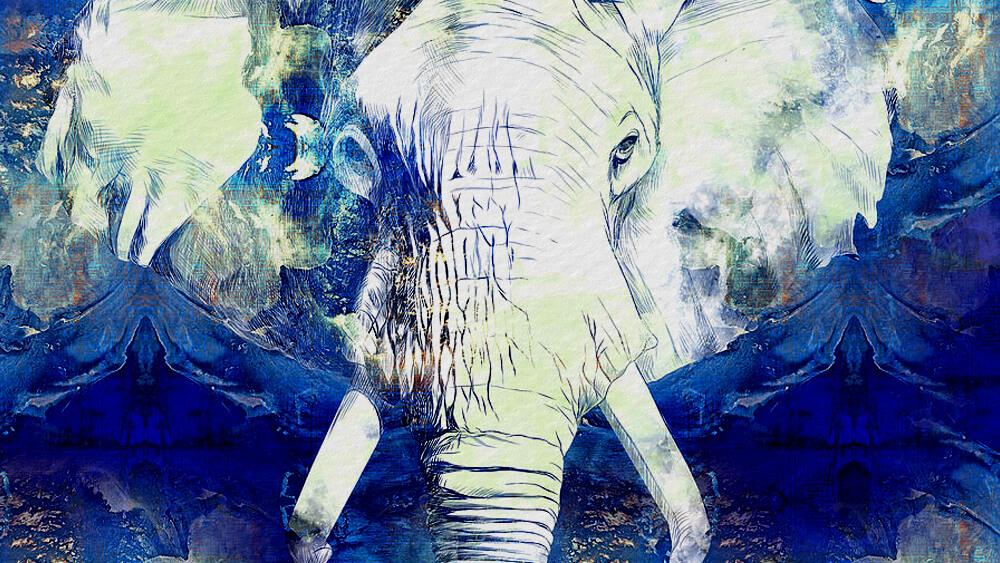 Truyện Con voi trắng