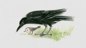 Quạ và Chim Sẻ